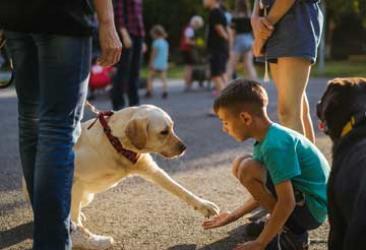 Как порадовать ребёнка? Подарите ему собаку!